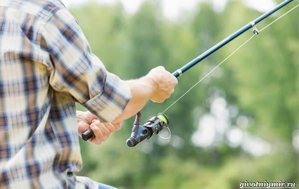 Календарь-рыболова-на-июнь-июль-август-4