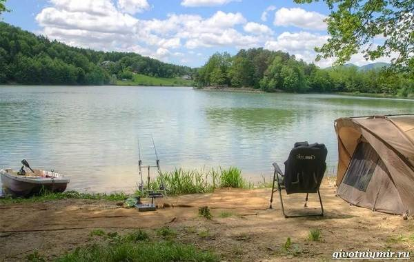 Календарь-рыболова-на-июнь-июль-август-5