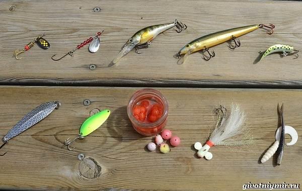 Календарь-рыболова-на-июнь-июль-август-7