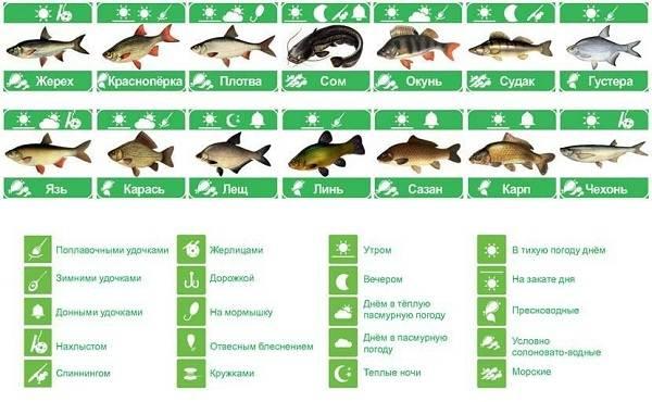 Календарь-рыболова-на-сентябрь-октябрь-ноябрь-1