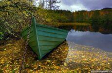 Календарь рыболова на сентябрь, октябрь, ноябрь