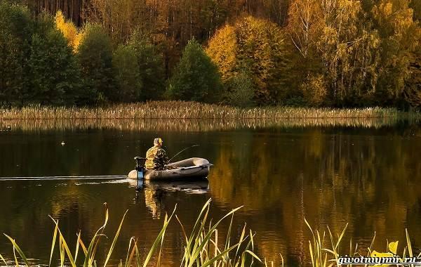 Календарь-рыболова-на-сентябрь-октябрь-ноябрь-4