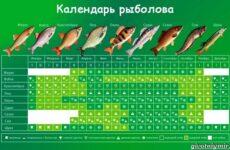 Календарь рыболова: весенние месяцы