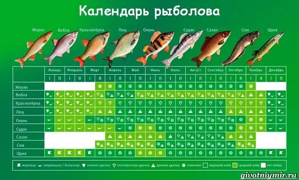 Календарь-рыболова-весенние-месяцы-1
