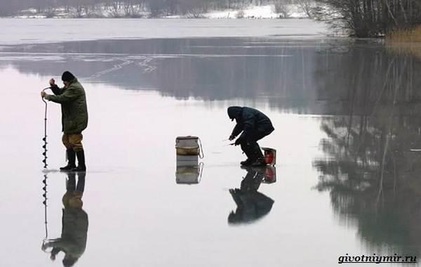 Календарь-рыболова-весенние-месяцы-3