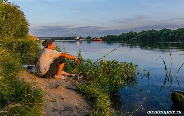 Лайфхаки-о-рыбалке-от-бывалого-рыбака-13