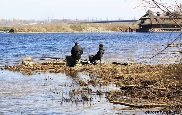 Лайфхаки-о-рыбалке-от-бывалого-рыбака-15