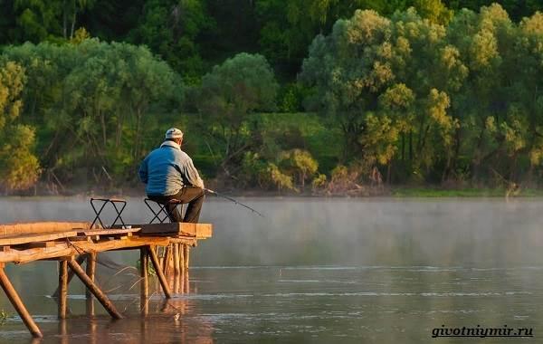 Лайфхаки-о-рыбалке-от-бывалого-рыбака-16