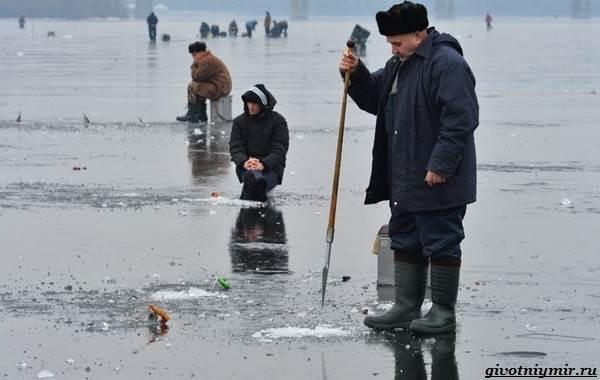 Лайфхаки-о-рыбалке-от-бывалого-рыбака-9