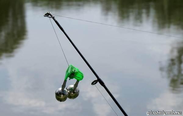 Ловля-карпа-по-открытой-воде-и-зимняя-рыбалка-на-карпов-8