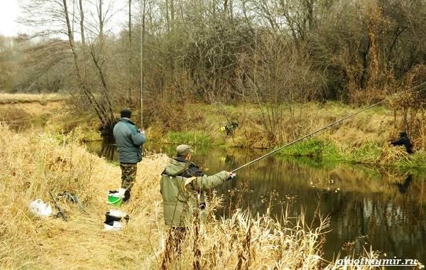 Ловля-плотвы-Как-где-и-на-что-ловить-эту-рыбу-11