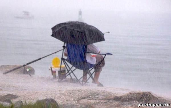Погода-для-рыбалки-Как-влияет-и-в-какую-лучше-идти-на-рыбалку-11