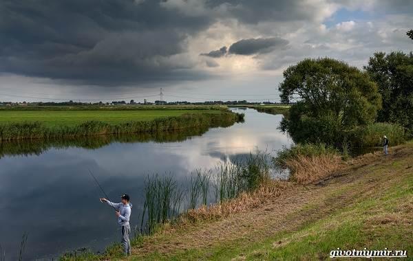 Погода-для-рыбалки-Как-влияет-и-в-какую-лучше-идти-на-рыбалку-9