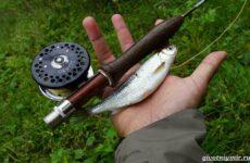 Рыбалка на ельца по открытой воде и со льда