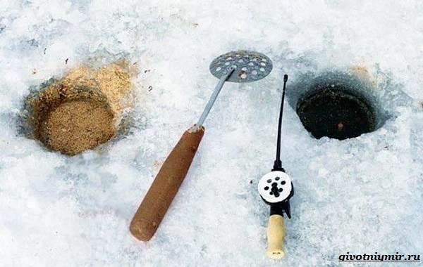 Рыбалка-на-плотву-в-разные-сезоны-и-различными-способами-11