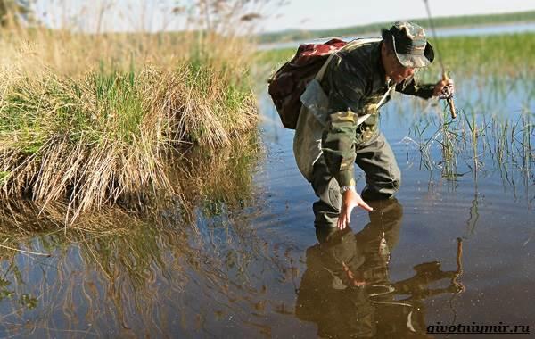Рыбалка-на-плотву-в-разные-сезоны-и-различными-способами-6