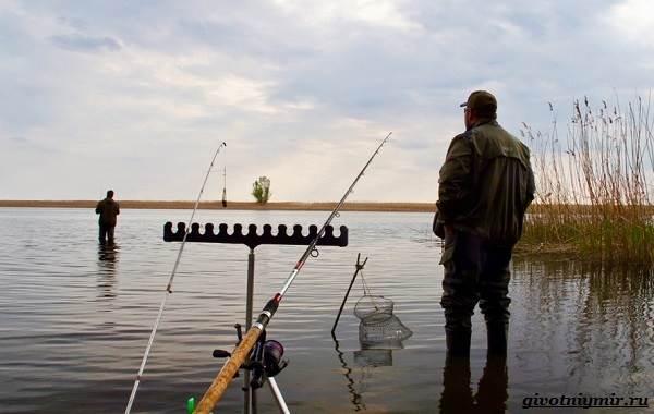 Рыбалка-на-плотву-в-разные-сезоны-и-различными-способами-7