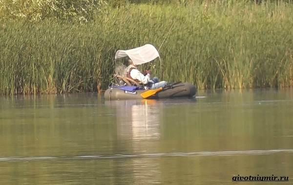 Рыбалка-на-плотву-в-разные-сезоны-и-различными-способами-8