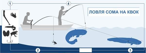 Рыбалка-на-сома-Где-его-искать-какую-использовать-наживку-и-снасти-12