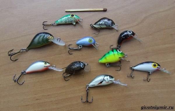 Рыбалка-на-язя-весной-и-летом-13