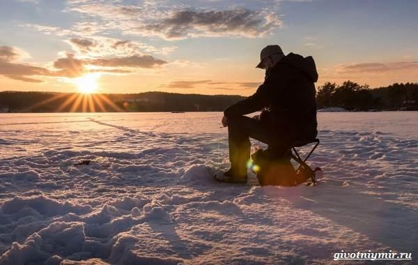 Рыболовный-календарь-особенности-рыбалки-в-декабре-12