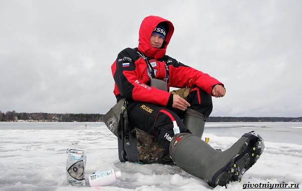 Рыболовный-календарь-особенности-рыбалки-в-декабре-15
