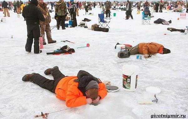 Рыболовный-календарь-особенности-рыбалки-в-декабре-19