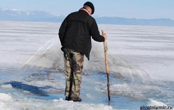 Рыболовный-календарь-особенности-рыбалки-в-декабре-2