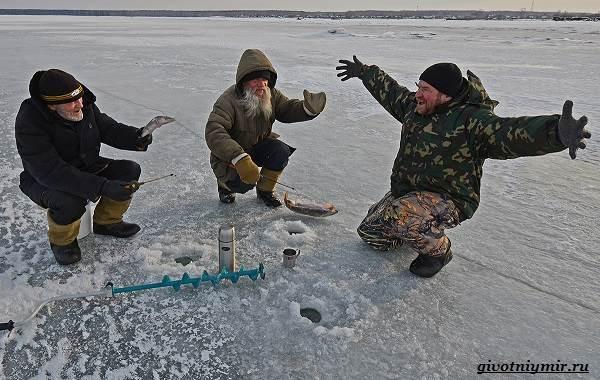 Рыболовный-календарь-особенности-рыбалки-в-декабре-20