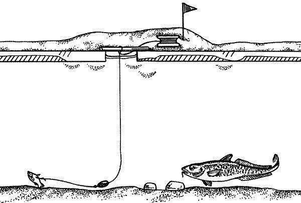 Зимняя-рыбалка-на-налима-где-искать-и-на-что-клюет-11