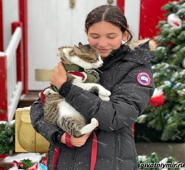 История-о-коте-который-помог-своей-хозяйке-выиграть-приз-в-50-тысяч-долларов-1