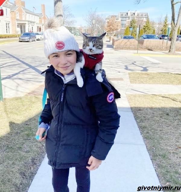 История-о-коте-который-помог-своей-хозяйке-выиграть-приз-в-50-тысяч-долларов-4