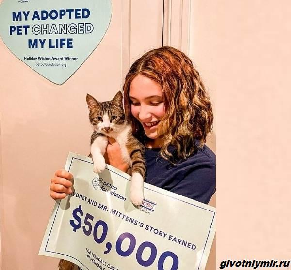 История-о-коте-который-помог-своей-хозяйке-выиграть-приз-в-50-тысяч-долларов-6