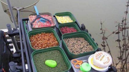 Наживки для рыбалки, их виды и особенности