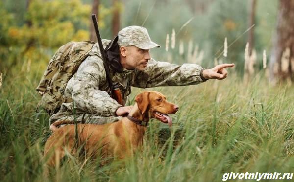 Охота-на-глухаря-разными-способами-3