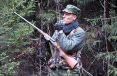Охота с манком и её особенности
