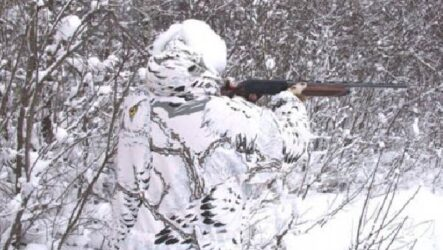 Охота в Сибири и её особенности
