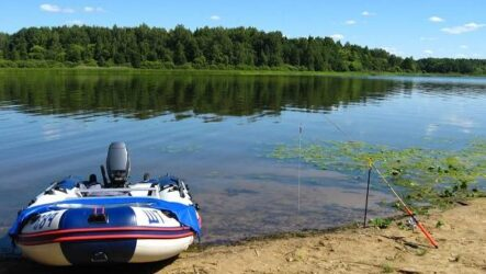 Рыбалка на Волге, её особенности, плюсы и минусы