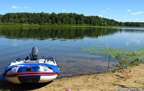 Рыбалка-на-Волге-её-особенности-плюсы-и-минусы-13