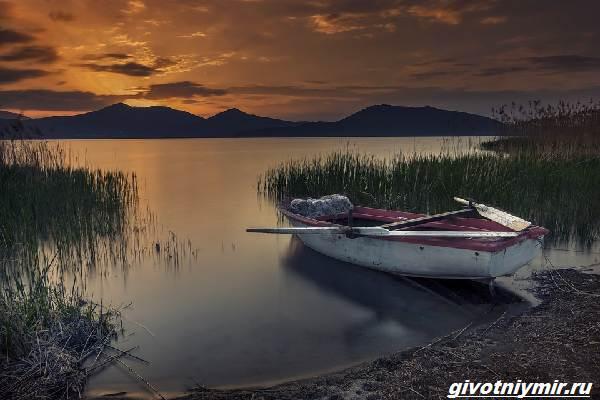 Рыбалка-с-лодки-её-особенности-плюсы-и-минусы-2