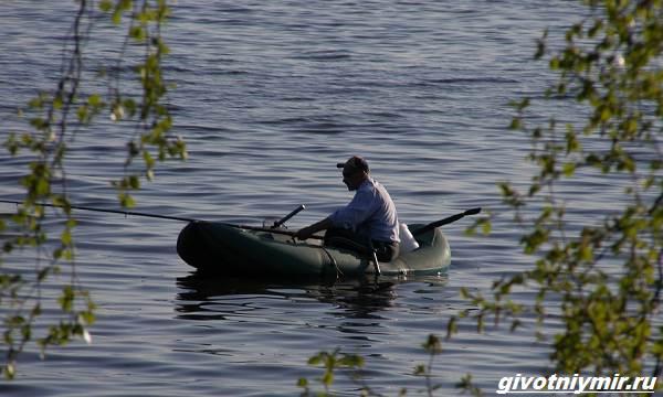 Рыбалка-с-лодки-её-особенности-плюсы-и-минусы-3