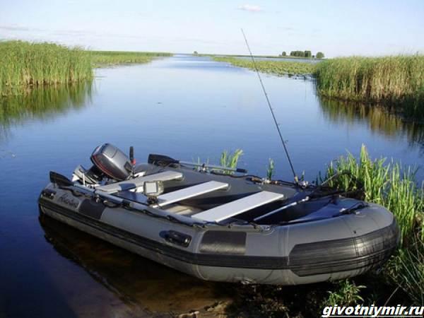 Рыбалка-с-лодки-её-особенности-плюсы-и-минусы-4