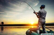 Рыбалка с лодки, её особенности, плюсы и минусы