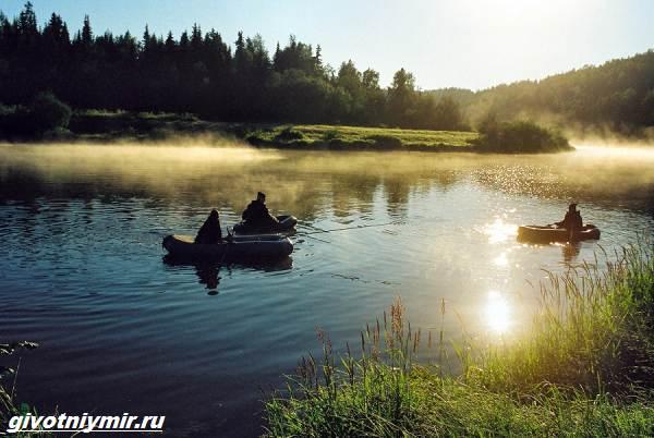 Рыбалка-в-Республике-Коми-и-её-особенности-2