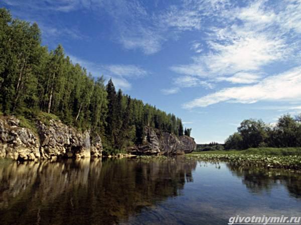 Рыбалка-в-Республике-Коми-и-её-особенности-3