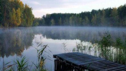 15 лучших рыболовных мест Калининградской области