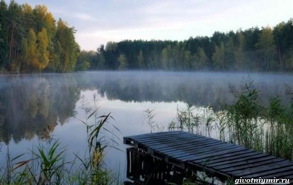 15-лучших-рыболовных-мест-Калининградской-области
