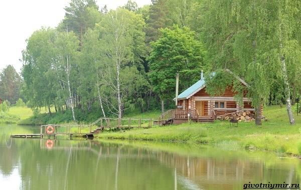 15-лучших-рыболовных-мест-в-Ульяновской-области-Бесплатные-и-платные-11