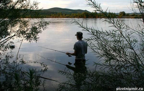 15-лучших-рыболовных-мест-Забайкальского-края-15