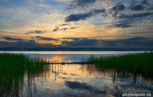 15-лучших-рыболовных-мест-Забайкальского-края-2